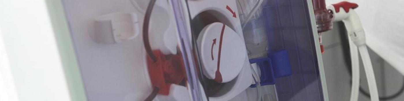 L'insuffisance rénale: de la dialyse à la greffe