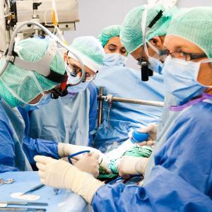 Transplantation: un pôle d'excellence européen