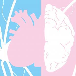 Faites le point sur votre santé cardiovasculaire!