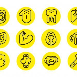 microbiote, recherche, bactéries
