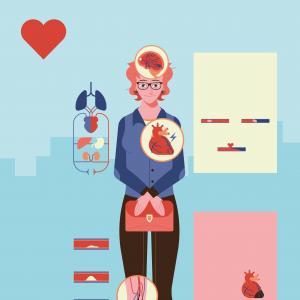 Infographie - Cœur vaisseaux cerveau