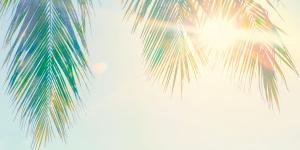 La part d'ombre du soleil